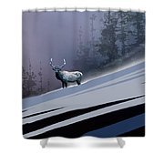 The Magnificent Elk Shower Curtain by Paul Sachtleben