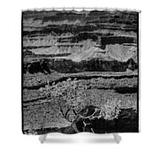 The Magnificent Grand Canyon Shower Curtain