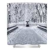 The Mall In Snow Central Park Shower Curtain