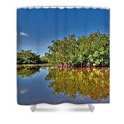The Mangrove Coast Shower Curtain