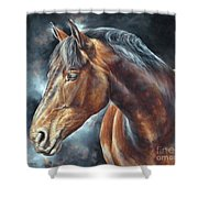 The Mare Shower Curtain