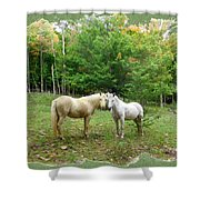 The Mares Watch Shower Curtain
