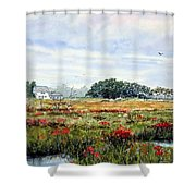 The Marsh In Bloom Shower Curtain