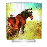 The Marvelous Mare Shower Curtain