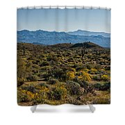 The Mcdowell Mountains Shower Curtain