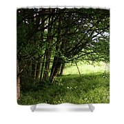 The Meeting Of Two Worlds Shower Curtain