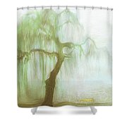 The Memories That Could Have Been Shower Curtain