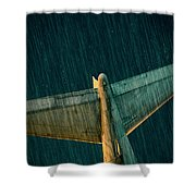 The Metal Whales Tale Shower Curtain