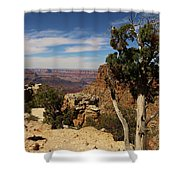 The Miracle Of Nature Shower Curtain