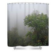 The Mists Shower Curtain