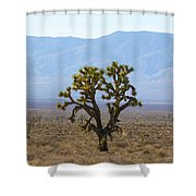 The Mojave Desert Shower Curtain