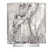 The Mother Lioness Shower Curtain