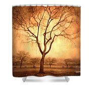 The Mother Tree Shower Curtain