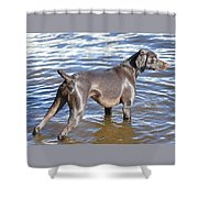 The Muddy Mississippi Shower Curtain