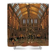 The Museum Of Natural History... London Shower Curtain