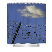 The Musical Barbed Wire Birds Shower Curtain