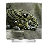 The Napping Rock Shower Curtain