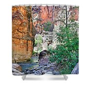 The Narrows Of The Virgin River  Shower Curtain