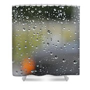 The Natural Lens That Is A Raindrop Shower Curtain