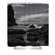 The Needles Black And White Shower Curtain