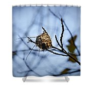 The Nest 1 Shower Curtain