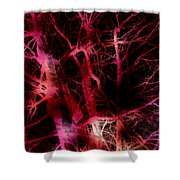 The Neural Network Of Trees Shower Curtain