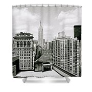 The New York Skyline Shower Curtain