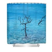 The Next Day Shower Curtain