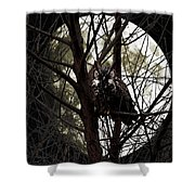 The Night Owl And Harvest Moon Shower Curtain