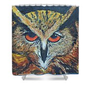 The Night Owl  Shower Curtain