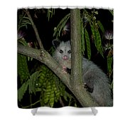 The Night Visitor Shower Curtain