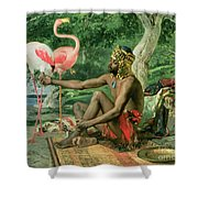 The Nubian Shower Curtain