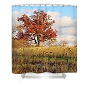 Red Oak Under November Skies Shower Curtain
