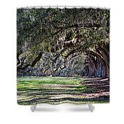 The Oaks At Boone Hall Shower Curtain