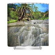 The Oasis  Shower Curtain