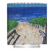 The Ocean View Shower Curtain