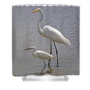 The Odd Couple Shower Curtain