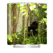 The Old Homestead #10 Shower Curtain
