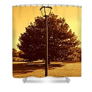The Old Lantern In The Park Shower Curtain