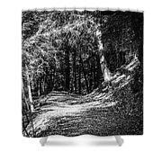 The Old Logging Road Shower Curtain