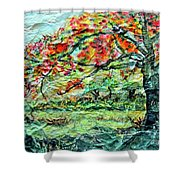 The Old Maple Tree Shower Curtain