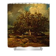 The Old Oak 1870 Shower Curtain