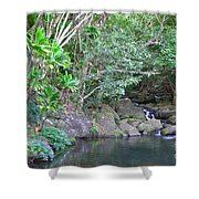 The Old Swimming Hole Shower Curtain