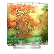 The Old Tree Of The Forest Shower Curtain