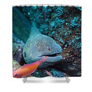 The One That Got Away Shower Curtain