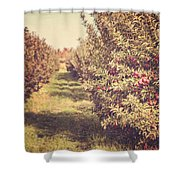 The Orchard Shower Curtain by Lisa Russo