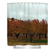 The Orchard Shower Curtain