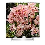 The Orchid Garden Shower Curtain