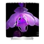 The Orchid Magic Shower Curtain