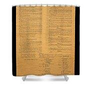 The Original United States Constitution Shower Curtain